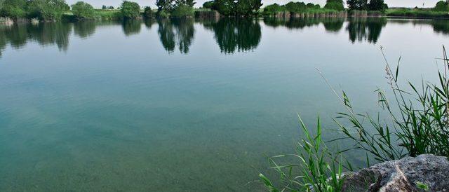 Der Bergersee in Kissing - ein Angelparadies