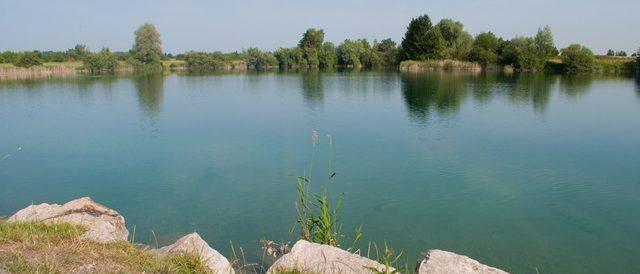 Der Bergersee in Kissing - eine Augenweide mit viel Fischbestand
