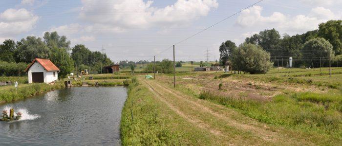 Die Teichanlage mit Sauerstoffversorgung bei Fischzucht Berger